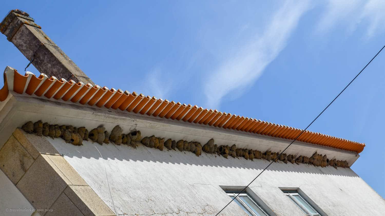 Housemartins Portugal