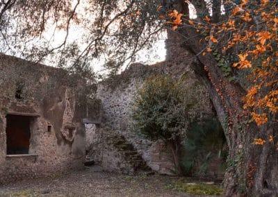 Old Garden Pompeii